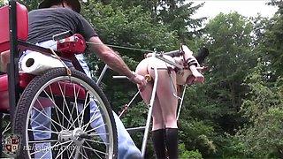 Naked ponygirl cart pulling