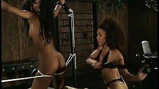 Ebony mistress whips her submissive babe