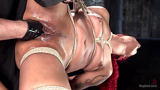 Daisy Ducati  The Pope in  Non Stop Squirting, Fisting And Torment In Brutal Bondage - HogTied